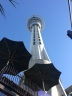 The SkyTower by day