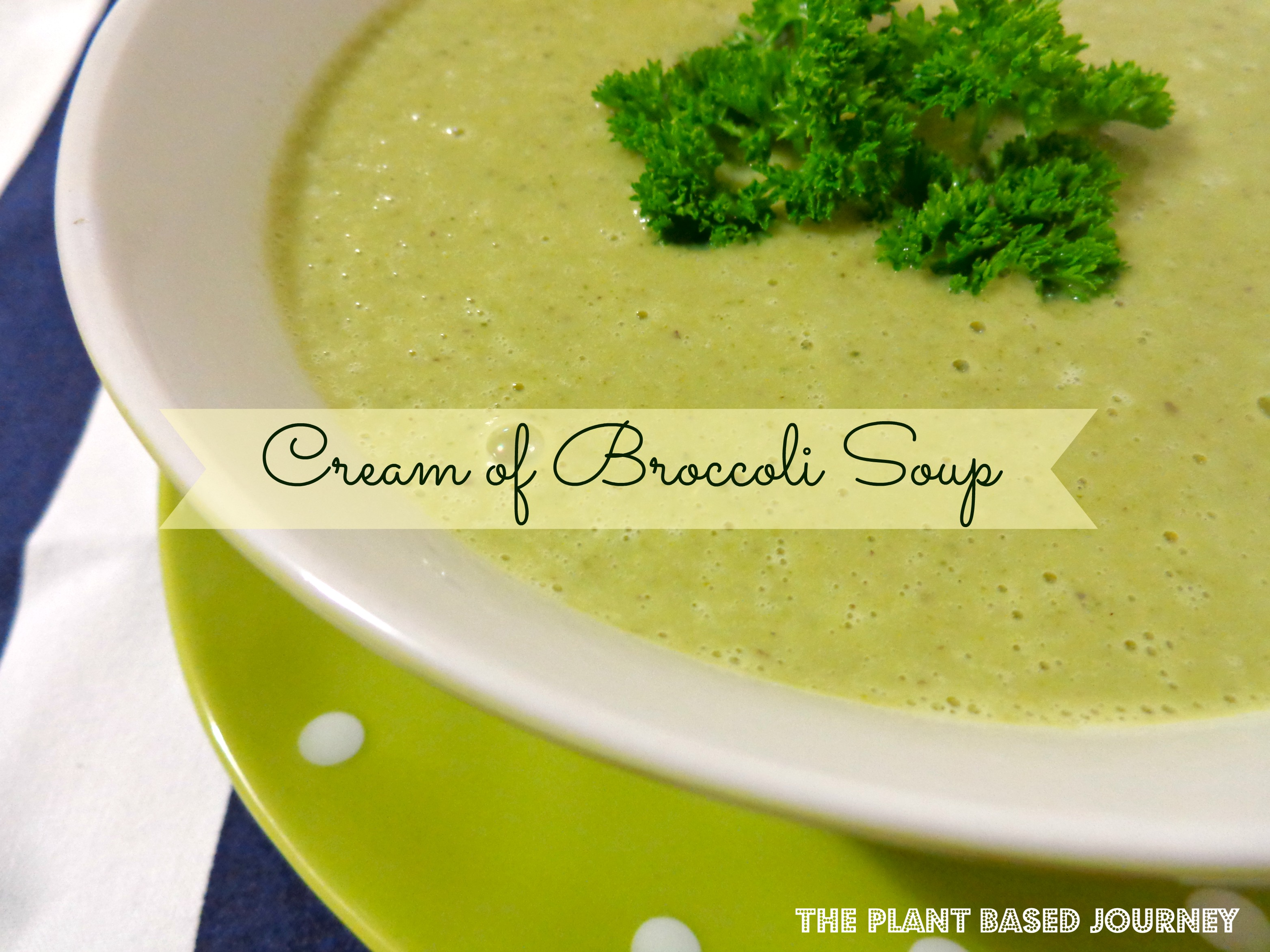 Cream of Broccoli Soup | The Plant Based Journey